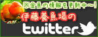 伊藤養魚場Twitter